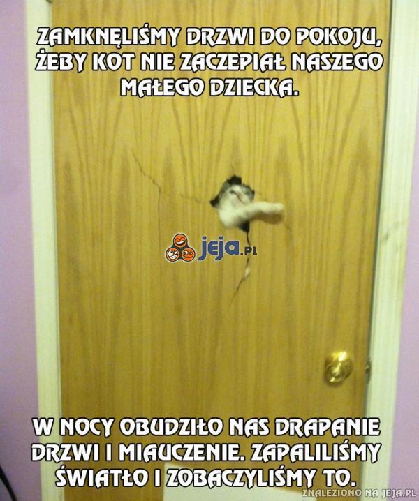 Zamknęliśmy drzwi do pokoju, żeby kot nie zaczepiał naszego dziecka