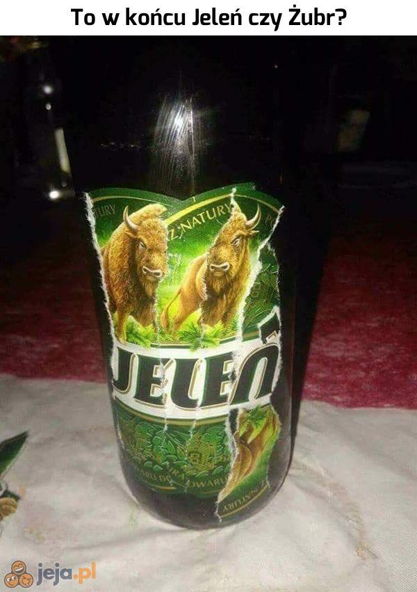 Nowe piwo