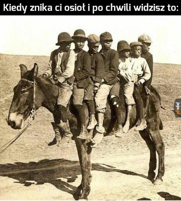 Pewnie chcieli się tylko przejechać