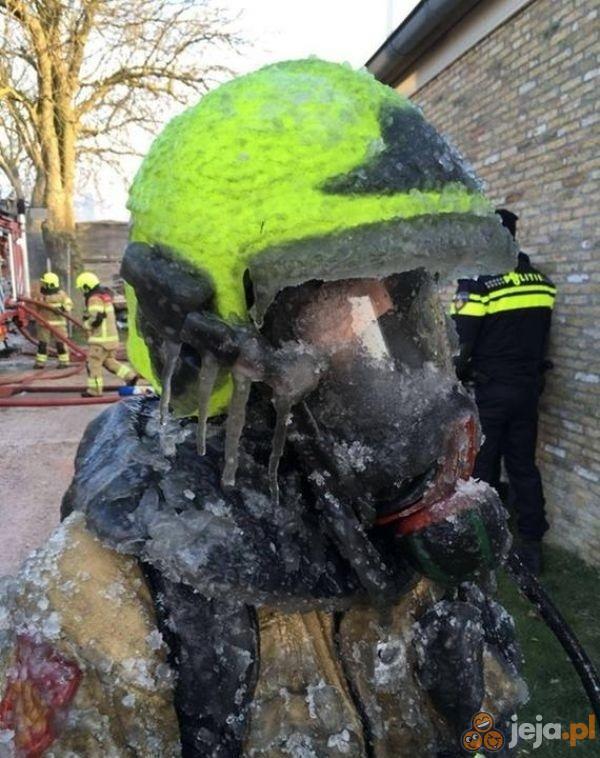 Lodowy strażak