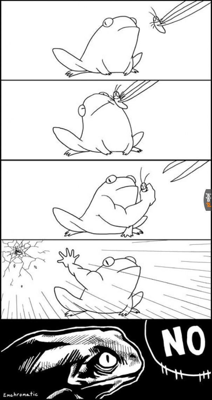 Nigdy nie wciskaj żabie muchy