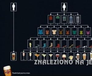 Różnice płciowe