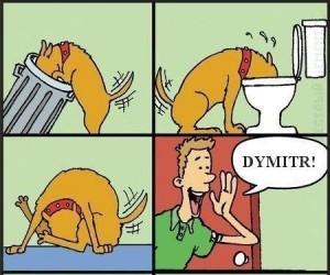 Pies i jego właściciel