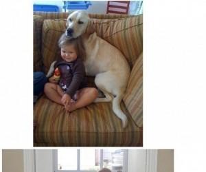 Zwierzęta uwielbiają dzieci