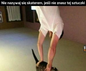 Skater lvl 100