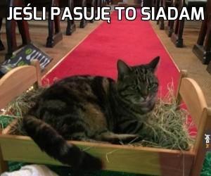 Kot zamiast Jezuska w szopce