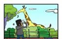 Rasizm nawet w Zoo