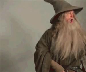 Gandalf, stahp!
