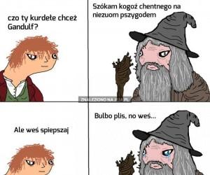 Bulbo gnoiu, no weś