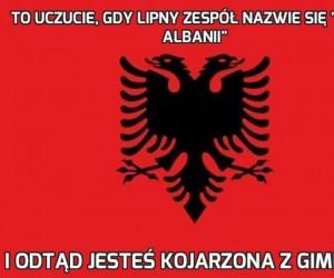 """To uczucie, gdy lipny zespół nazwie się """"Gang Albanii"""""""