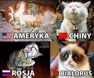 Kraje ukazane w koci sposób