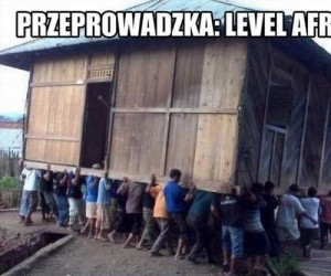 Przeprowadzka: level Afryka