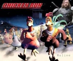 Żaden kurczak nie jest bezpieczny, gdy Sandor poluje