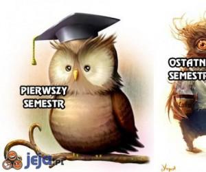 Pierwszy i ostatni semestr