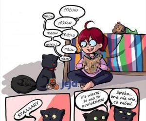 Uważaj, co mówisz do kota