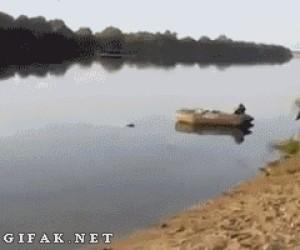 Cholera, to nie była amfibia...