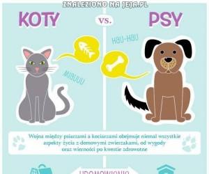 Koty vs. Psy