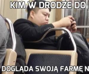 Kim w drodze do roboty