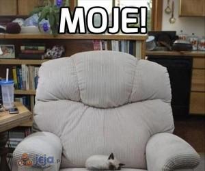 Ktoś przejął mój fotel