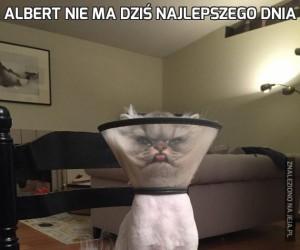 Albert nie ma dziś najlepszego dnia