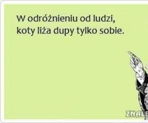 Lizanie...