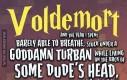 Gdyby ta historia była opowiedziana z perspektywy Voldemorta...