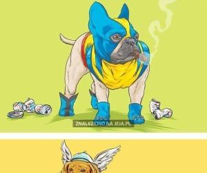 Psiaki z uniwersum Marvela