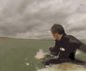 Znajoma foczka wpada na surfing