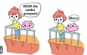 Mózgowe porady