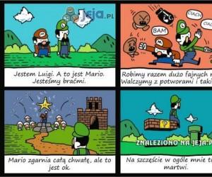 Dobry brat Luigi
