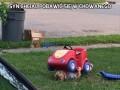 Syn chciał pobawić się w chowanego