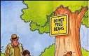 Nie karmić niedźwiedzi