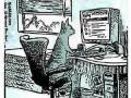 Przedsiębiorczy kot