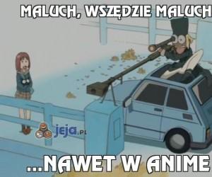 Maluch, wszędzie Maluch!