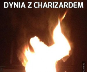 Dynia z Charizardem