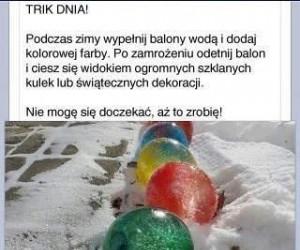 Zimowy Trik