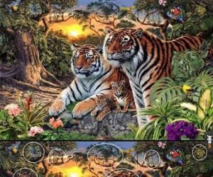 Znajdź tygrysy