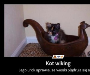Kot wiking