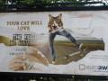 Pomieszany billboard