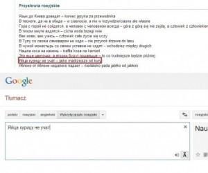Dzięki, Google tłumacz!