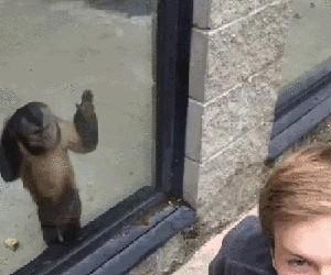 Ej, ty! Nie odwracaj się ode mnie!