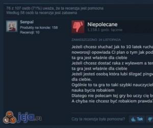 Ciekawa recenzja na Steamie