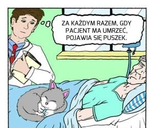 Pan Puszek