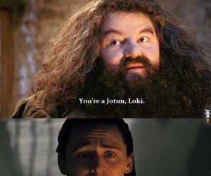 Hagrid, jak możesz!