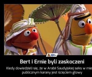 Bert i Ernie byli zaskoczeni