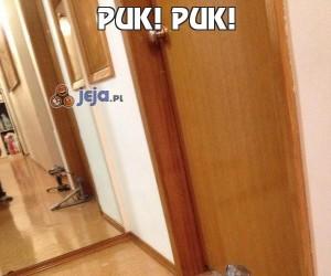 Puk! Puk!
