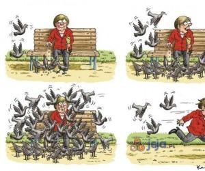 Tymczasem w Niemczech...