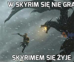 W Skyrim się nie gra