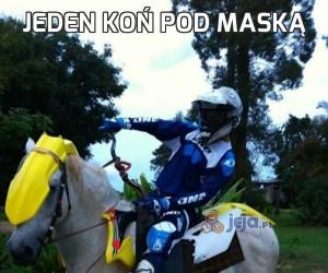 Jeden koń pod maską