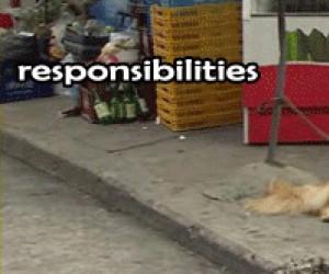 Obowiązki vs Ja